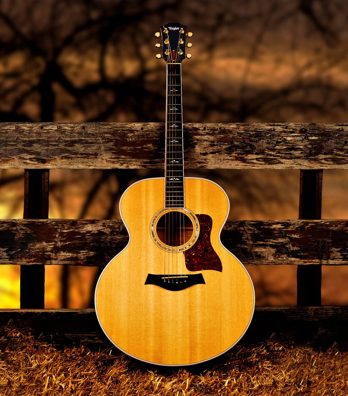 guitar musical instrument photography