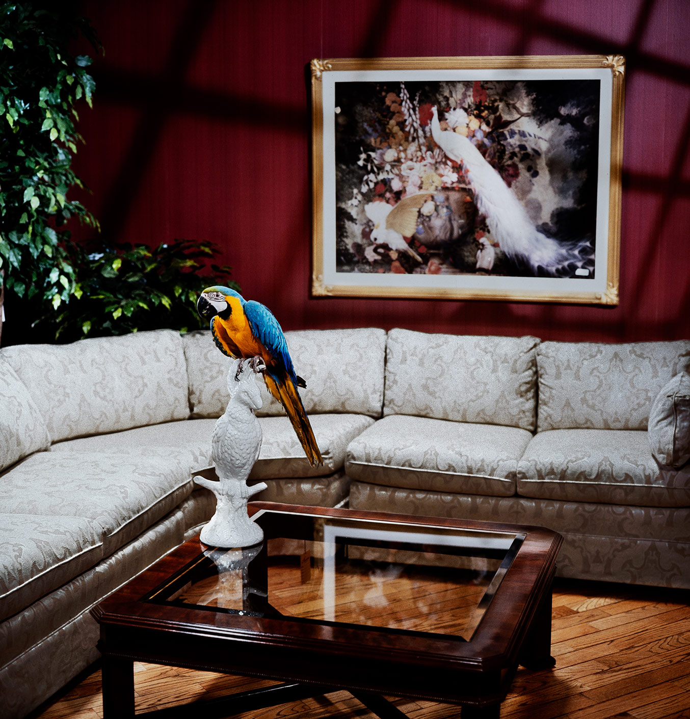 furniture photography for advertising