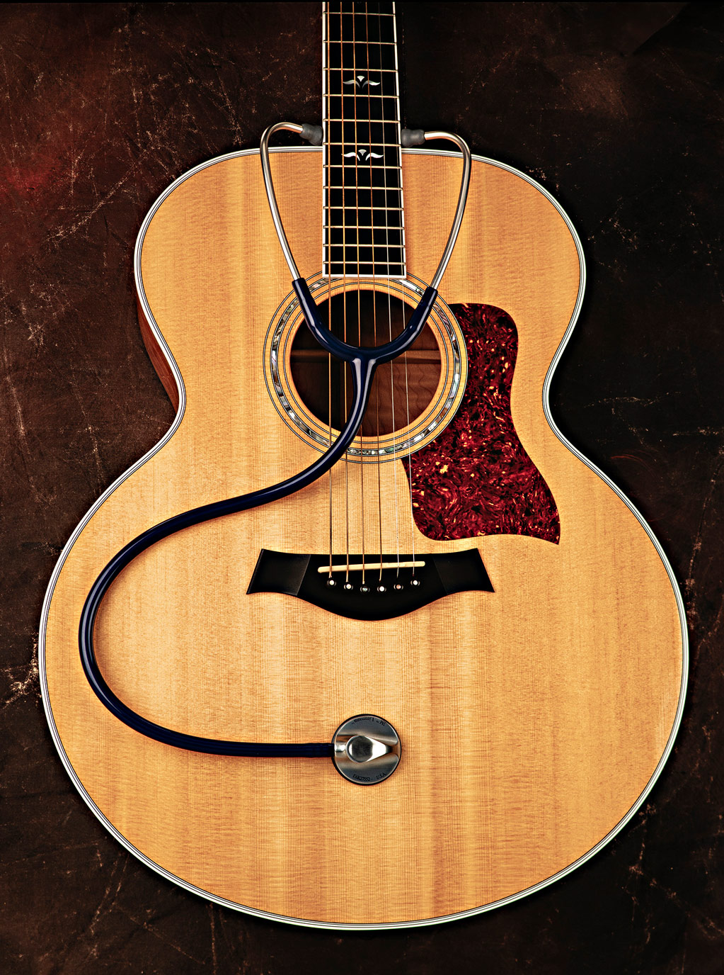 guitar photography musical instruments